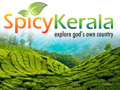 Spicy Kerala - explore god's own country